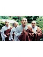 Hi, Dharma 2  -Showdown In Seoul
