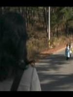 Walk On a Little More
