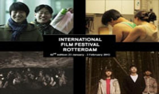 Rotterdam Gorges on Korean Cinema