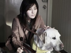 Korean Film Remakes Boom in China