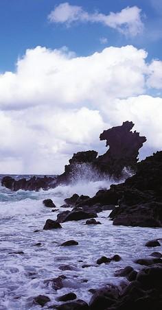 [KO-PRODUTION] Jeju Island in Production searching Jeju