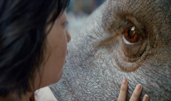 OKJA Received Glowing Cannes Reviews Despite Netflix Controversy