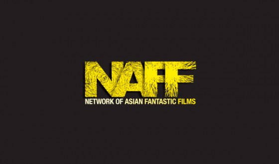 NAFF Presents IT Project Participants for 2018