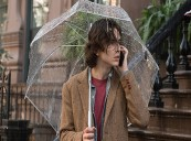 Woody ALLEN Tops the Korean Box Office with A RAINY DAY IN NEW YORK