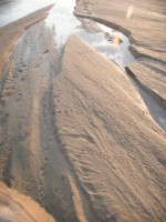 Following Sand River