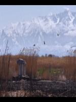 Kim Alex's Place: Ansan-Tashkent