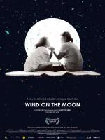 Wind on the Moon