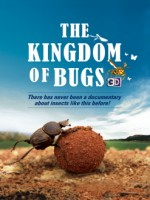 The Kingdom of Bugs