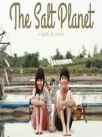 The Salt Planet
