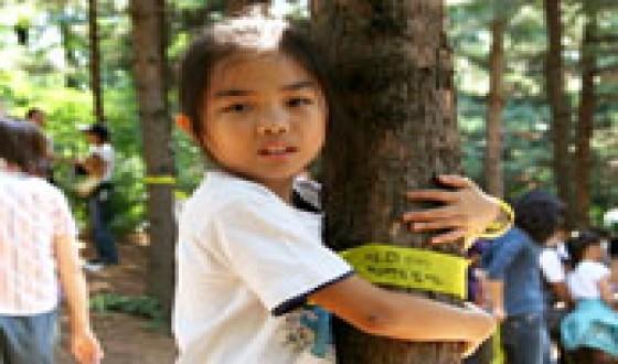 Korean Documentaries at the BIFF