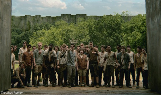Hollywood Blockbuster The Maze Runner Tops Korean Box Office Chart