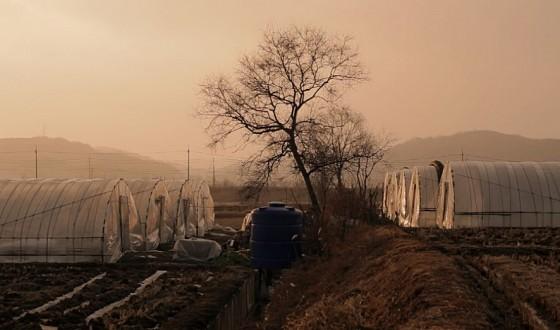 Ten Korean Films Screened in Geneva